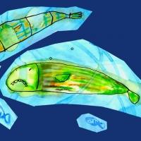 ilustracion-cuento-guerra-peces07